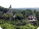 Guatemala Part 1 – Tikal (Mum HG, beware the spider pics!)